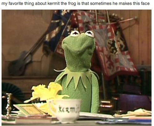 kermit annoyed